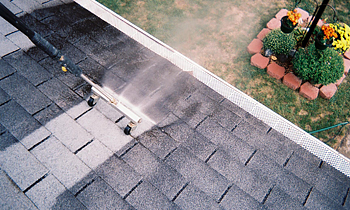 Roof Cleaning in Austin TX Roof Cleaning Services in Austin TX Roof Cleaning in TX Austin Clean the roof in Austin TX Roof Cleaner in Austin TX Roof Cleaner in TX Austin Quality Roof Cleaning in Austin TX Quality Roof Cleaning in TX Austin Professional Roof Cleaning in Austin TX Professional Roof Cleaning in TX Austin Roof Services in Austin TX Roof Services in TX Austin Roofing in Austin TX Roofing in TX Austin Clean the roof in Austin TX Cheap Roof Cleaning in Austin TX Cheap Roof Cleaning in TX Austin Estimates on Roof Cleaning in Austin TX Estimates in Roof Cleaning in TX Austin Free Estimates in Roof Cleaning in Austin TX Free Estimates in Roof Cleaning in TX Austin